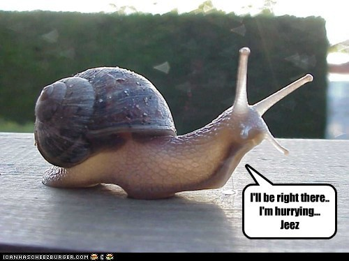 annoyed hurrying jeez slow snail