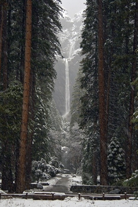 Snowy Falls at Yosemite National Park