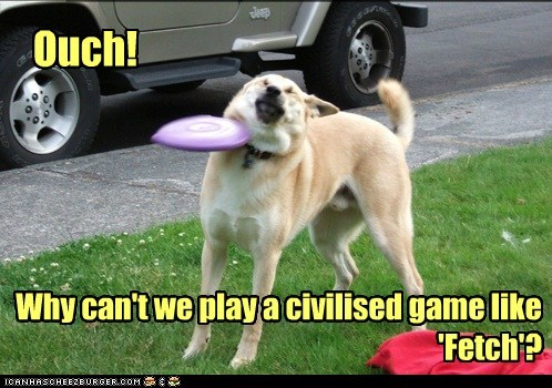 Ouch! Why can't we play a civilised game like 'Fetch'?