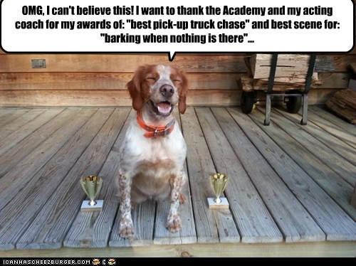 "OMG, I can't believe this! I want to thank the Academy and my acting coach for my awards of: ""best pick-up truck chase"" and best scene for: ""barking when nothing is there""..."