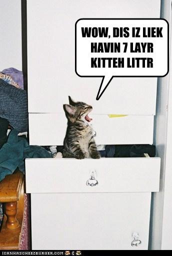 WOW, DIS IZ LIEK HAVIN 7 LAYR KITTEH LITTR