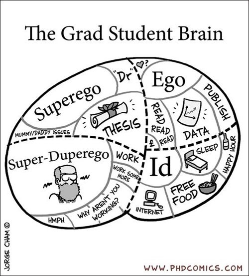 ego brain grad student - 6995801088