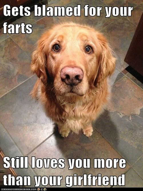 Gets blamed for your farts  Still loves you more than your girlfriend