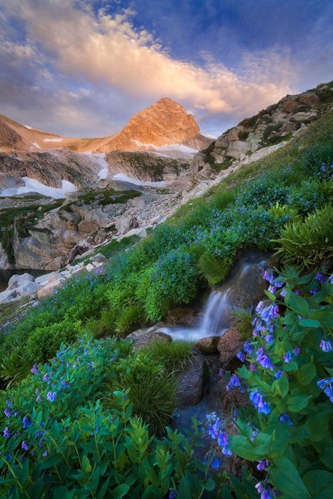 A Splash of Color at the Indian Peaks Wilderness