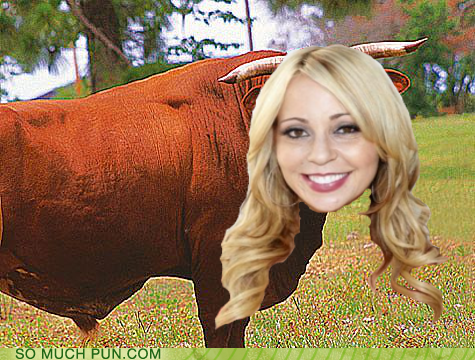 terrible shoop tara strong literalism bull prefix tara - 6997601536