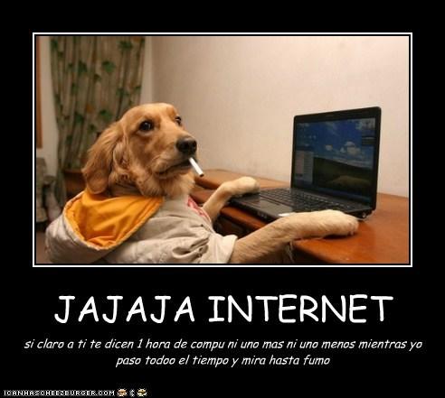 JAJAJA INTERNET