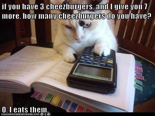 Cheezburger Image 6997877248