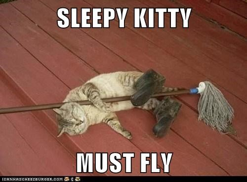 SLEEPY KITTY  MUST FLY