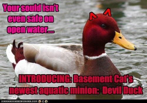 ^ ^ INTRODUCING: Basement Cat's newest aquatic minion: Devil Duck Your sould isn't even safe on open water....