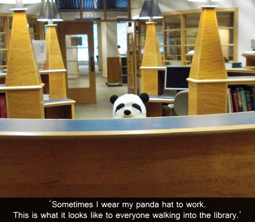 library librarian panda hat - 7000048384