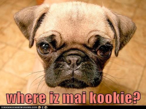 where iz mai kookie?