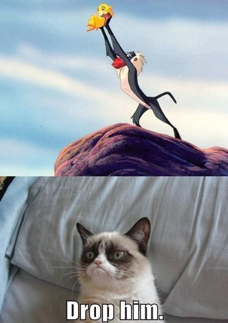 lion king,Grumpy Cat,dropped