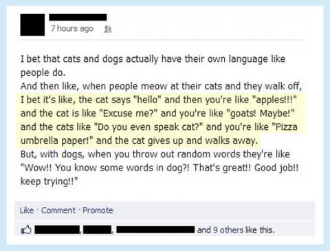 dogs english language facebook meow bark Cats - 7000328192