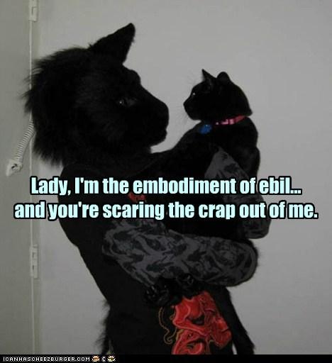 basement cat cat creepy funny - 7000901120