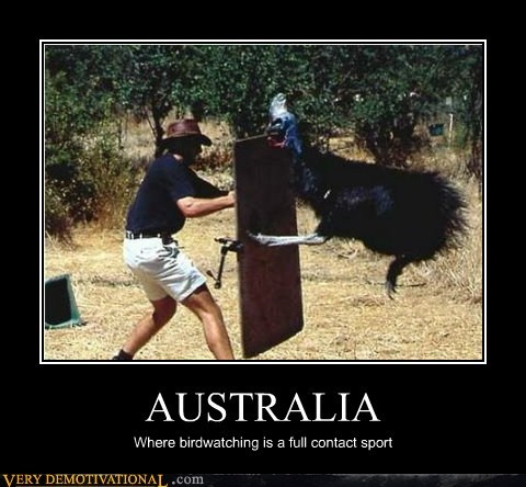 bird watching wtf australia sport