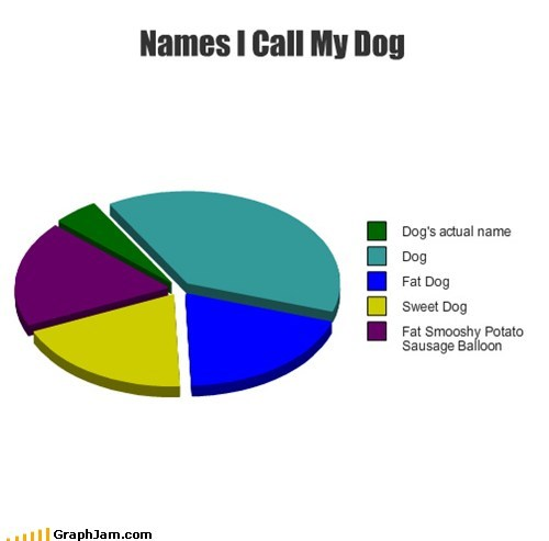 confuse pet dogs name Pie Chart