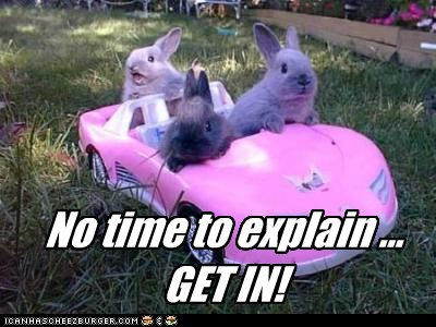 get in,bunnies,carrot juice,no time to explain,car