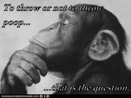 question,throwing poop,thinking,to be or not to be,chimpanzees