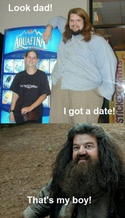 Harry Potter,tall,relationships,Hagrid,dating