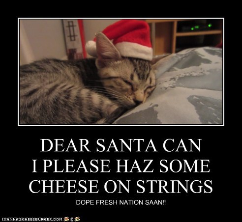 DEAR SANTA CAN I PLEASE HAZ SOME CHEESE ON STRINGS