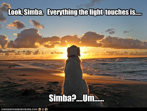 Look, Simba. Everything the light touches is..... Simba?....Um......