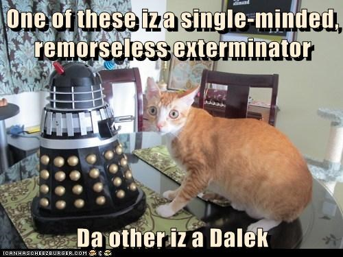 One of these iz a single-minded, remorseless exterminator  Da other iz a Dalek