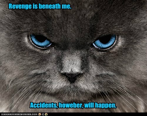 Revenge is beneath me. Accidents, howeber, will happen.