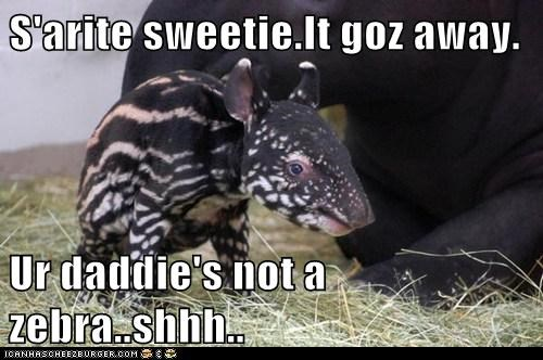 S'arite sweetie.It goz away. Ur daddie's not a zebra..shhh..