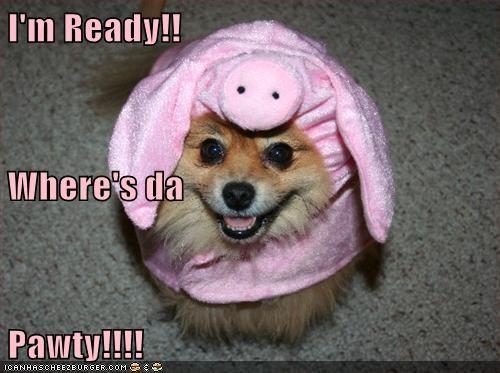 I'm Ready!! Where's da  Pawty!!!!