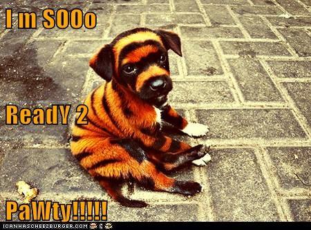 I m SOOo ReadY 2 PaWty!!!!!