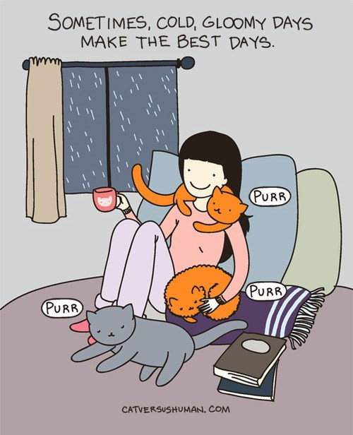 rainy day cozy cat versus human friends comfy comic Cats rain - 7003519744