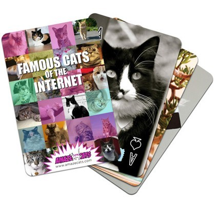 charity,deck,internet,famous cats,cards,playing cards,Cats
