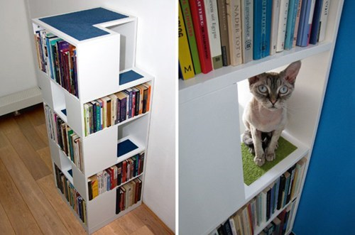 reading is sexy design shelf Cats - 7004014336