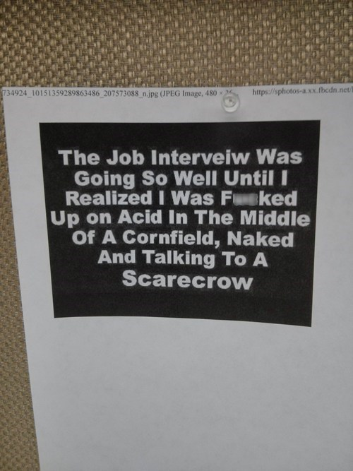 jobs,drugs,acid,scarecrow,interview,after 12