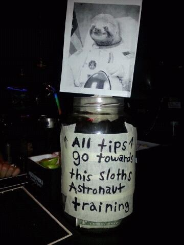 tips,paying,astronaut training,sloth
