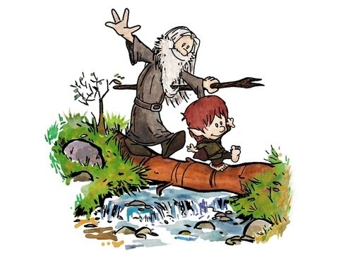 calvin and hobbes art Lord of the Rings gandalf funny - 7004507648