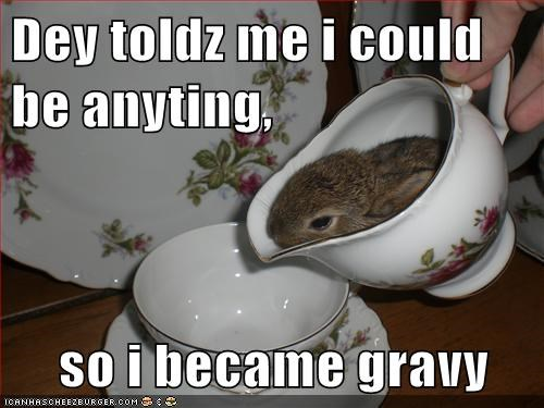 they told me i could be anything,bunnies,gravy,pouring