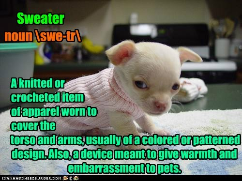 Sweater noun swe-tr A knitted or crocheted item of apparel worn to cover the torso and arms, usually of a colored or patterned design. Also, a device meant to give warmth and embarrassment to pets.
