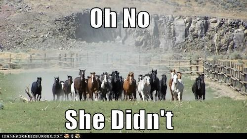 you,charging,running,oh no she did not,horses