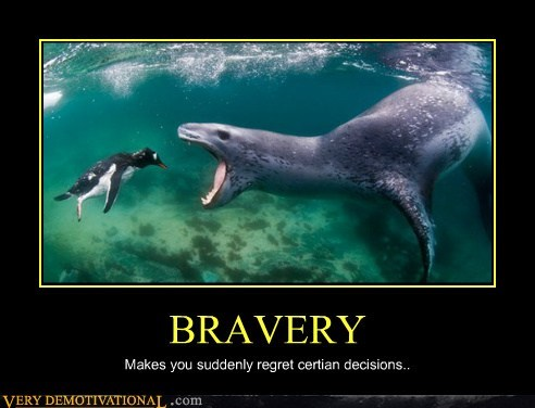 seal bravery penguin