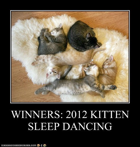 WINNERS: 2012 KITTEN SLEEP DANCING