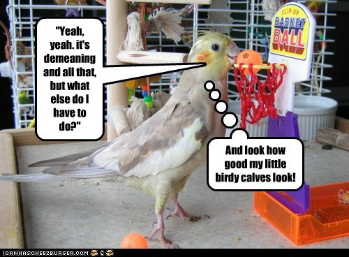 """""""Yeah, yeah. it's demeaning and all that, but what else do I have to do?"""" And look how good my little birdy calves look!"""