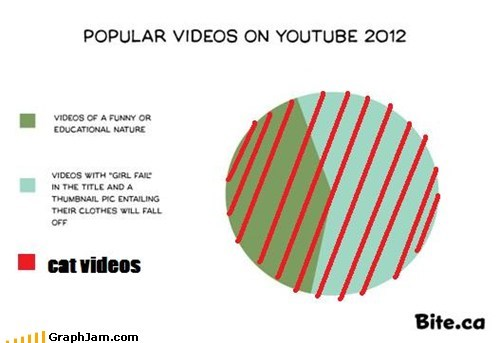 Reframe youtube cat videos Champion Pie Chart