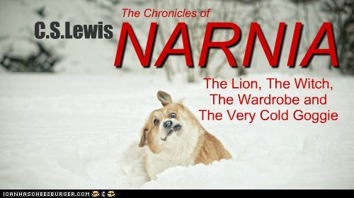 NARNIA The Lion, The Witch, The Wardrobe and The Very Cold Goggie C.S.Lewis The Chronicles of