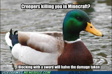good advice duck,Memes,minecraft