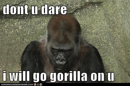 dont u dare i will go gorilla on u