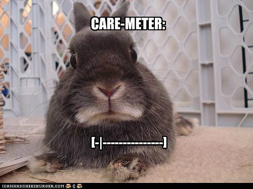 bunnies,care,unimpressed,meter,zero