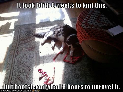 It took Edith 8 weeks to knit this,  but bootsie only had 8 hours to unravel it.