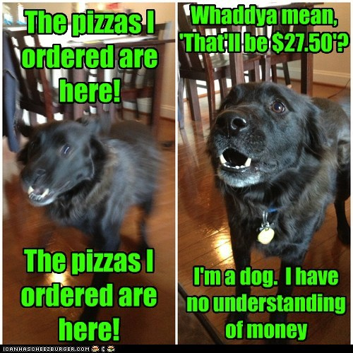 The pizzas I ordered are here! The pizzas I ordered are here! Whaddya mean, 'That'll be $27.50'? I'm a dog. I have no understanding of money