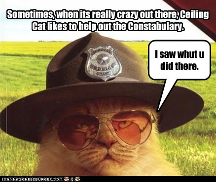 Sometimes, when its really crazy out there, Ceiling Cat likes to help out the Constabulary. I saw whut u did there.